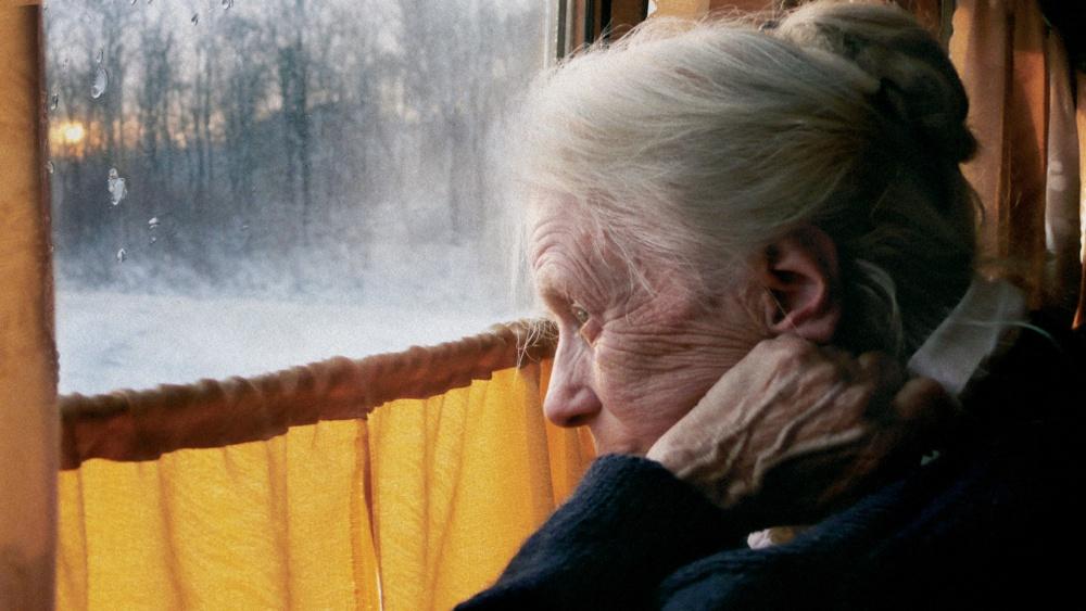 Swetlana Geier – Aperçu biographique